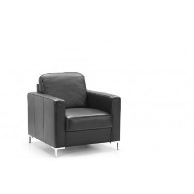 Basic Fotel...